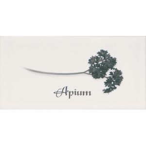 Decor Apium Blanco 10x20