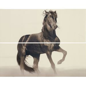 Decor Set(2) Horse Beige 20x50