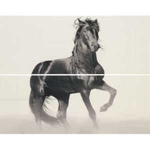 Decor Set(2) Horse White 20x50