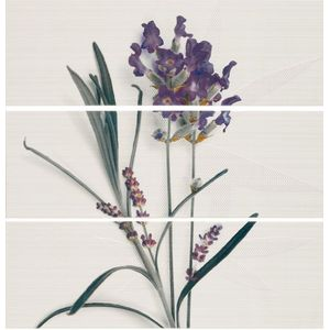 Decor Set(3) Lavanda 20x60